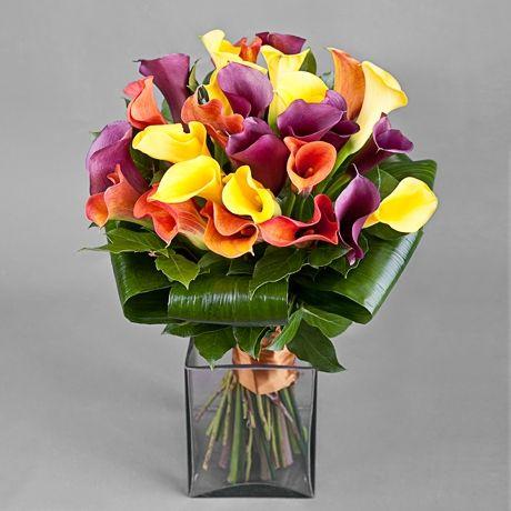 Цветы купить дешево в москве каллы где купить домашние цветы в камышине